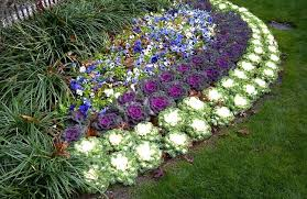 Small Picture images of perennial flower bed plans Landscaping Gardening Ideas