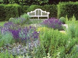 Small Picture Drought Tolerant Plants In Full Sun Gardens wwwcoolgardenme