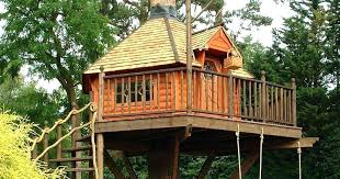 inside of simple tree houses. Tree House Designs For Kids Featured Design Inside  Gallery Ideas . Of Simple Houses