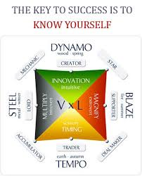 Personality Chart Maker Read This Before Taking The Wealth Dynamics Personality Profile