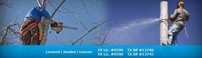 daniels tree service50