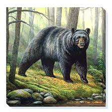 black bear decor clearance woodland morning bear wrapped canvas wall art clearance decorating sugar cookies