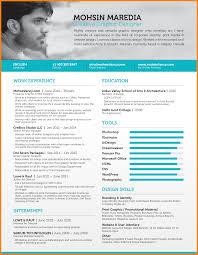Visual Resume Samples Classy Online Resume Website Examples In