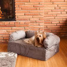 featured image of snoozer luxury dog sofas