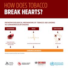 World Health Organization Blood Pressure Chart
