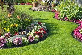 garden flower beds of flowers play