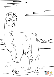 Llama coloring page | Free Printable Coloring Pages