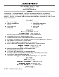 Treasurer Resume Free Resume Example And Writing Download