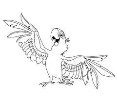 Small Picture Parrot Coloring Pages Free Budgerigar Parrots vonsurroquen