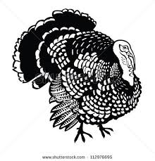 wild turkey clipart black and white. Delighful Black In Wild Turkey Clipart Black And White R