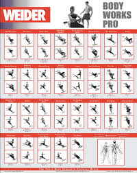Weider Ultimate Body Works Workout Chart Luxury Weider Pro