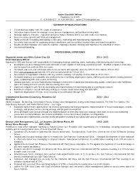 Chic Resume Examples Retail Store Manager For Retail Sales