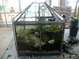 fairy garden terrarium. lets grow: fairy garden terrarium