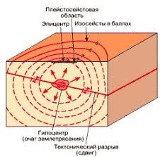 Причины и последствия землетрясений контрольная работа ru Типы сейсмических волн