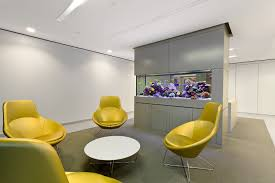 fish tank for office. ADG Aquarium In Office Space Is Viewable From Two Sides By Design - And It Would Fish Tank For T