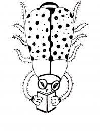Lieveheersbeestje Kleurplaten
