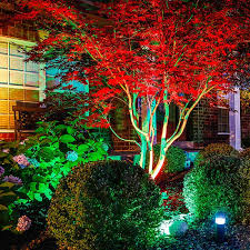 image of colorful led landscape lighting kits