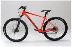 Cannondale Trail 5 Size Chart Cannondale Trail 5 1x 2019 Mountain Bike L Ex Demo Ex Display