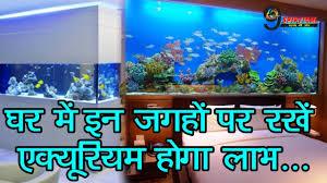 ,     ...| Best  place to keep aquarium