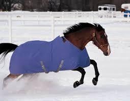 Horse Turnout Blanket Size Chart Horse Blanket Chart