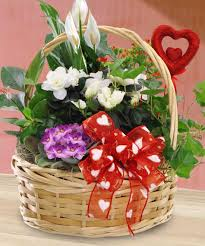 valentine blooming plant basket valentine s day mancuso s florist st clair ss florist