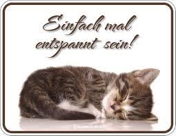 Katzen Sprüche Einfach Mal Entspannt Sein Fun Schilder 22x17