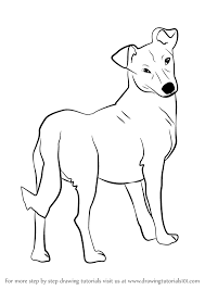 dog drawing. Plain Dog How To Draw A Cute Dog Intended Drawing D