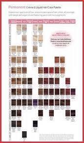 23 Abiding Color Ion Color Chart