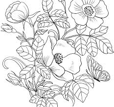 Phenomenalpring Coloring Pages For Toddlers Butterfly Viewing