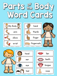 Body Part Chart For Toddlers Pin On Pre K Centers