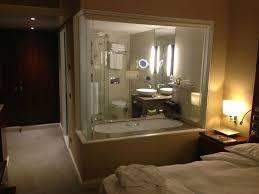 hotel okura amsterdam see through bathroom nice detail also has privacy screen