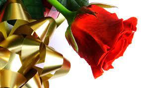 Valentine Roses Gif - Novocom.top