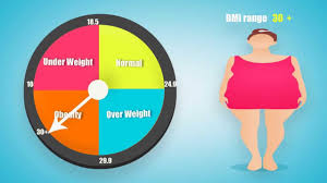 Bmi Calculator For Women And Men What Is Bmi