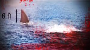megalodon shark sightings 2015.  Megalodon Megalodon Shark Caught On Tape  2015 Collection Of The Best Vids Video U2013  Covered Truths And Sightings K