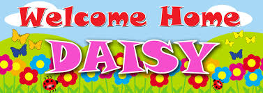 Welcome Home New Baby Banner Personalised Banners