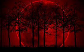 2560x1600 blood moon exclusive hd wallpapers 6568