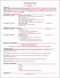 American Resume Template Beautiful American Resume Resume Templates
