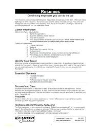 It Professional Resume Examples It Professional Resume Samples ...
