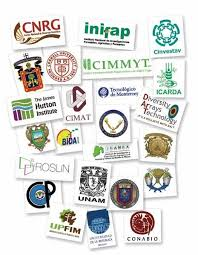 El cimmyt y la Sagarpa reafirman compromiso con el campo mexicano - PDF  Descargar libre