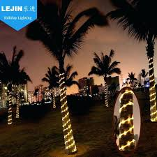 Led Rope Light Lowes Extraordinary Outdoor Led Rope Light Palm Tree Decoration Buy Lights Medium Size