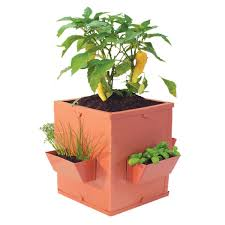 Image result for herb basket