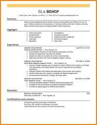 Plan Template Social Work Case Management Australia Best Adoptions