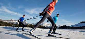 Touring Cross Country Ski Size Chart Find The Right Cross Country Skiing Equipment