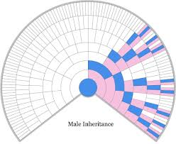 Blaine Bettinger Chart Dna Male X Dna Inheritance Chart Brady Family Tree In