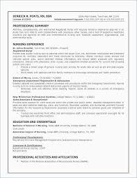 Skills Based Resume Templates Impressive Experience Based Resume Examples Best Of ⛃ 48 Professional Resume