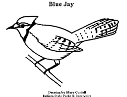 Small Picture Top 91 Blue Coloring Pages Tiny Coloring Page