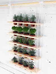 indoor vertical garden. Tips For Growing An Indoor Vertical Garden Picture