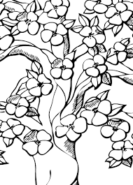 Small Picture Sakura Flower Coloring Pages Coloring Pages