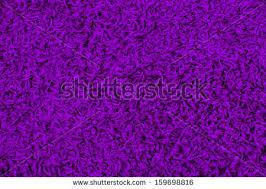 purple carpet texture. purple carpet texture n
