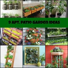 apartment herb garden. Apartment Herb Garden - Amazing Pleasant . O